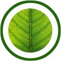 Green Energy Technology at ProQuip